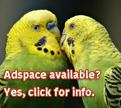 """Adspace"